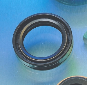 Rotary Shaft Seal